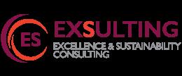 Exsulting logo