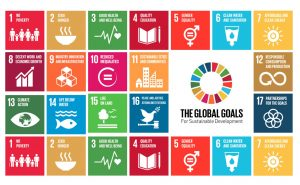The SDG & the ESIndex® Method